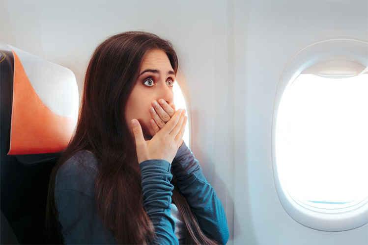 حمله پنیک در هواپیما