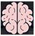 مغز و شناخت